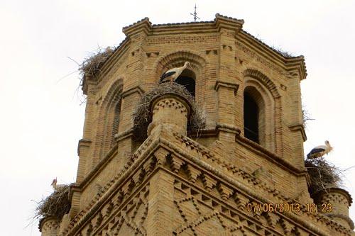 Cigüeñas habitando todo el año la Torre de Monzalbarba. Spain.