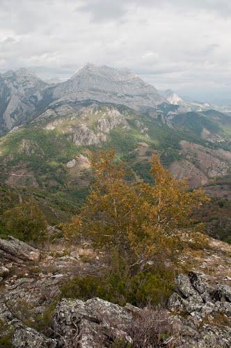 MTÑ ORIENTAL LEONESA; País Leonés. Pintas desde Alto de Montemoro