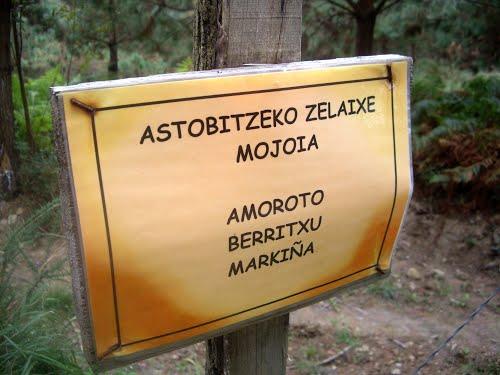 MUGA KARTELA Berriatua-Amoroto-Markina Xemein