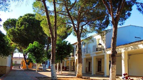 <Calle Feria> Trajano (Sevilla)