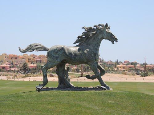 Wild Horse,Desert Springs Golf Club.