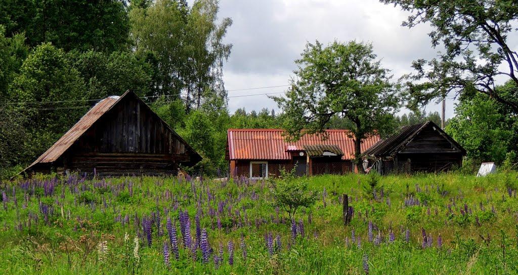 Litwa, Bojembały