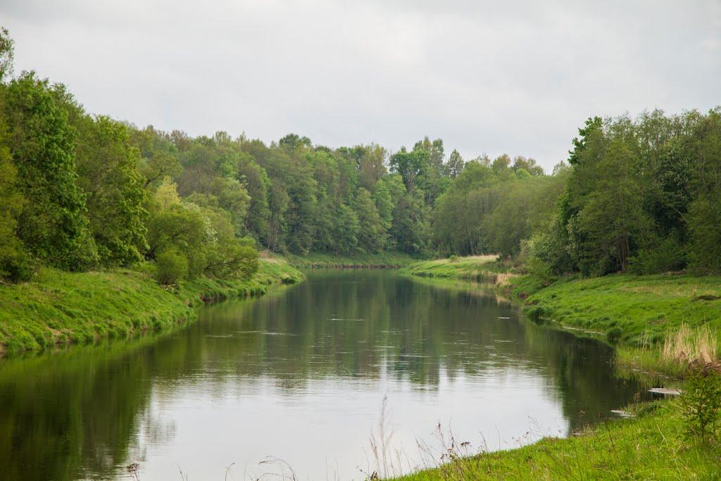 Slavikų sen., Lithuania