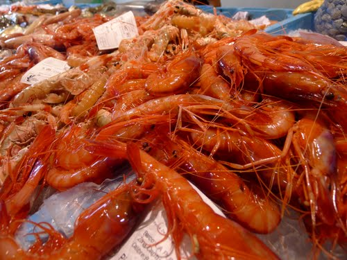 Gambes fresques