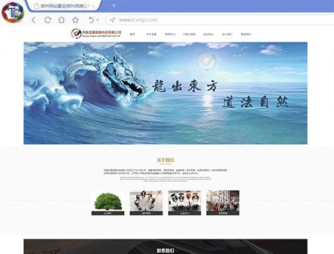 河南龙道科技有限公司