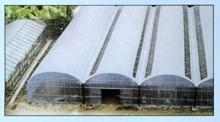 GLW622连栋塑料温室