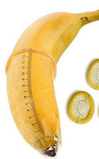 как определить размер полового члена