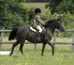 Pony-Saddle-Young-Rider