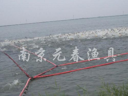 自主研制捕捞技术|捕捞网|规格自订