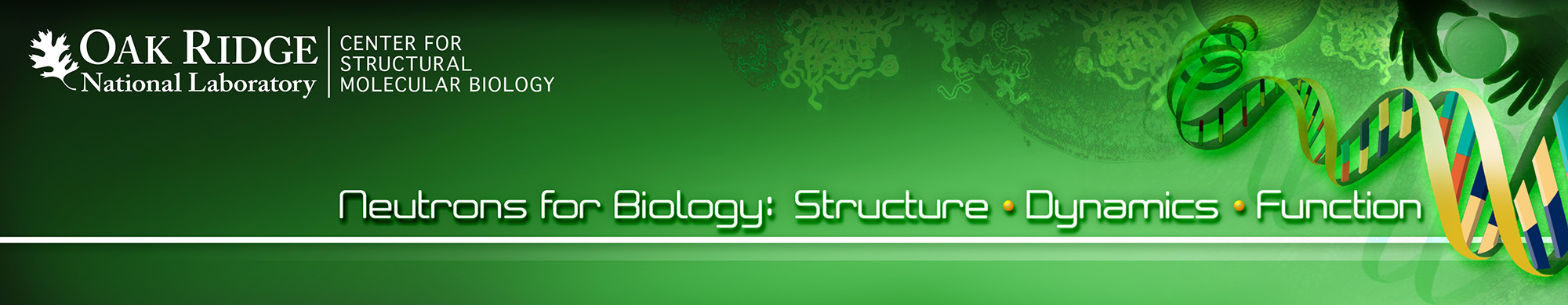 Neutons for Biology: Structure, Dynamics and Function