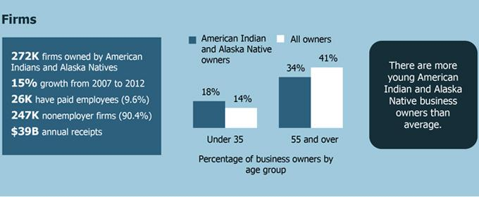 SBO Data on Native America-owned firms