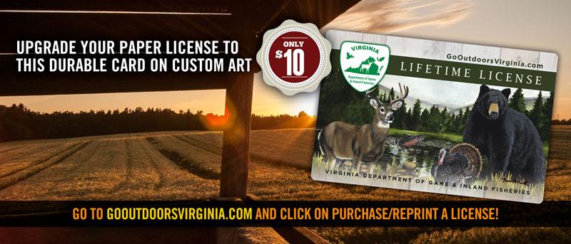 gov-lifetime-license-ad-01