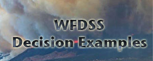Banner WFDSS Decision Examples