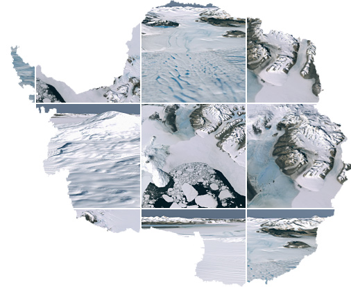 Collage of Antarctica