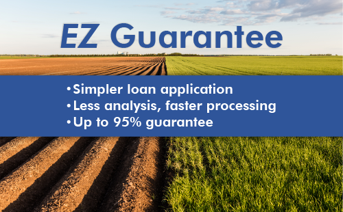 Lenders may request EZ Guarantees on applicatins.