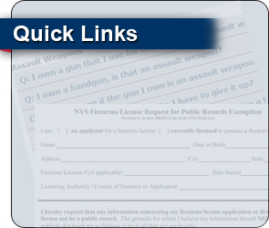 Links related to NYSAFE Act