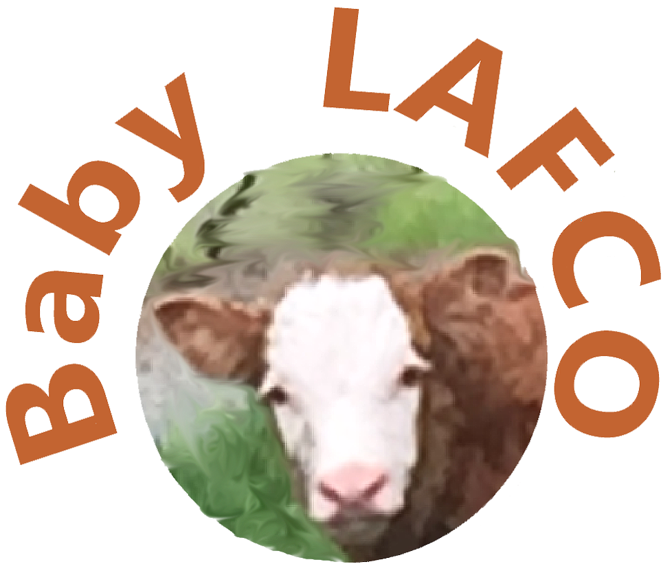 Baby LAFCO