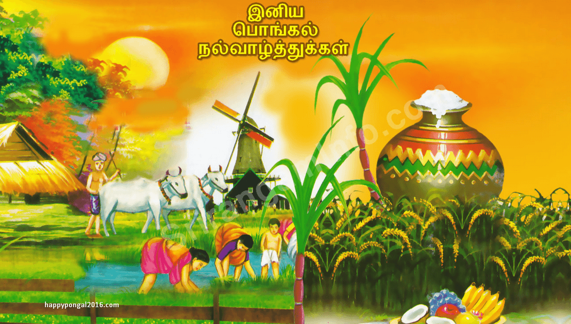Happy pongal 2016 tamil images