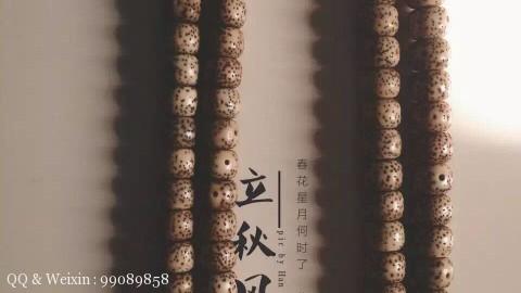 星月菩提子金蝉子立秋风物