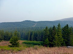 Badger-Two Medicine area in Northwest Montana