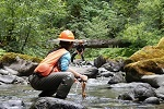 Two BLM employees conduct scientific research in a stream, thumbnail