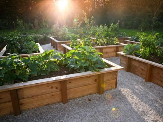 Image result for Raised-Bed Gardening bhg.com
