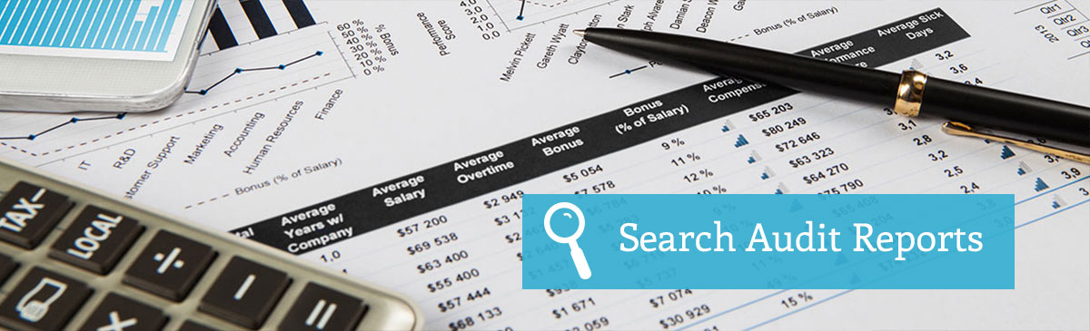 Search Audit Reports