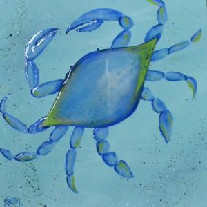 Sherry_Blue-Crab_Nov-2015_DSC_2554