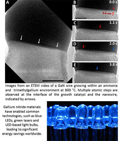 Watching Gallium Nitride Nanowires Grow at the Atomic Scale