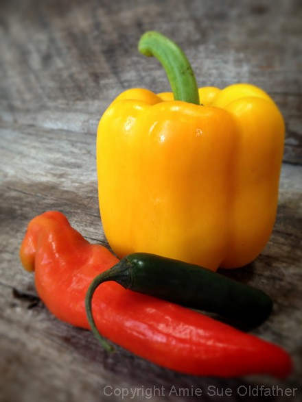 pepper-jack-cheese-peppers