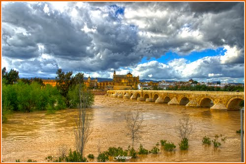 The river Guadalquivir with a great flood of water under the Roman bridge(f)  Dedicada a  **Lucien  Kivit**