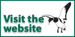 SWAP on the web