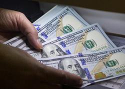 Dollar ucuzlaşmaqda davam edir