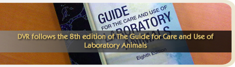 DVR follows the 8th edition of The Guide for Care and Use of Laboratory Animals