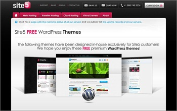 wordpress_themesite_site501