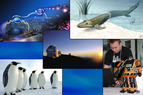 Cell, fossil fish, the Gemini North Observatory, Antarctic penguins, researcher, and a robot