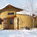 iarna 2008
