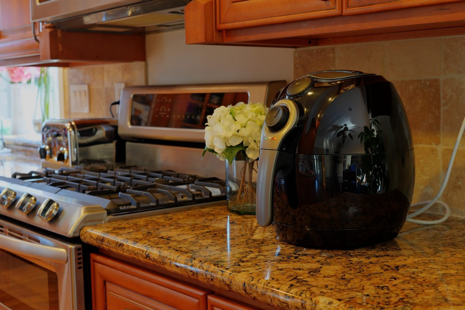 If you want a high quality fryer under $100, the Avalon Bay AB-Airfryer100B is a very good choice.