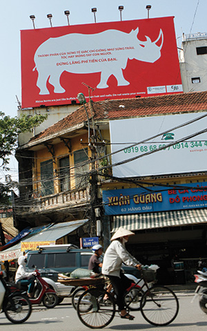 An education poster in Hanoi against the use of rhino horn