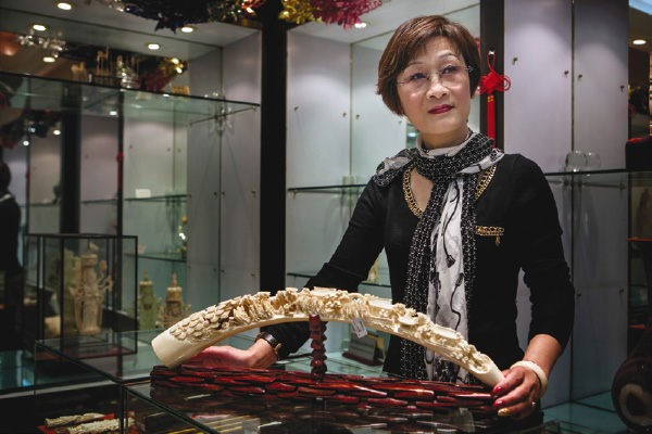 An ivory tusk on sale in a licensed showroom in Shanghai for about £25,000