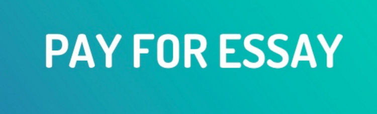 Pay for Essay Writing to Professionals and Get a High Grade!