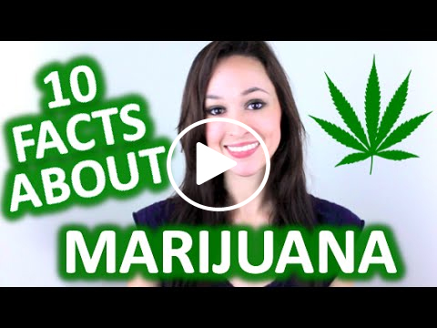 10 Interesting Facts About Marijuana