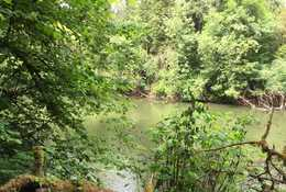 photo of new acquisition along Tualatin River