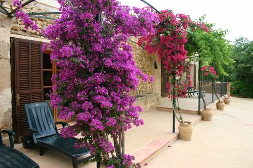 Finca Son Sama, Llucmajor, Mallorca, Spain