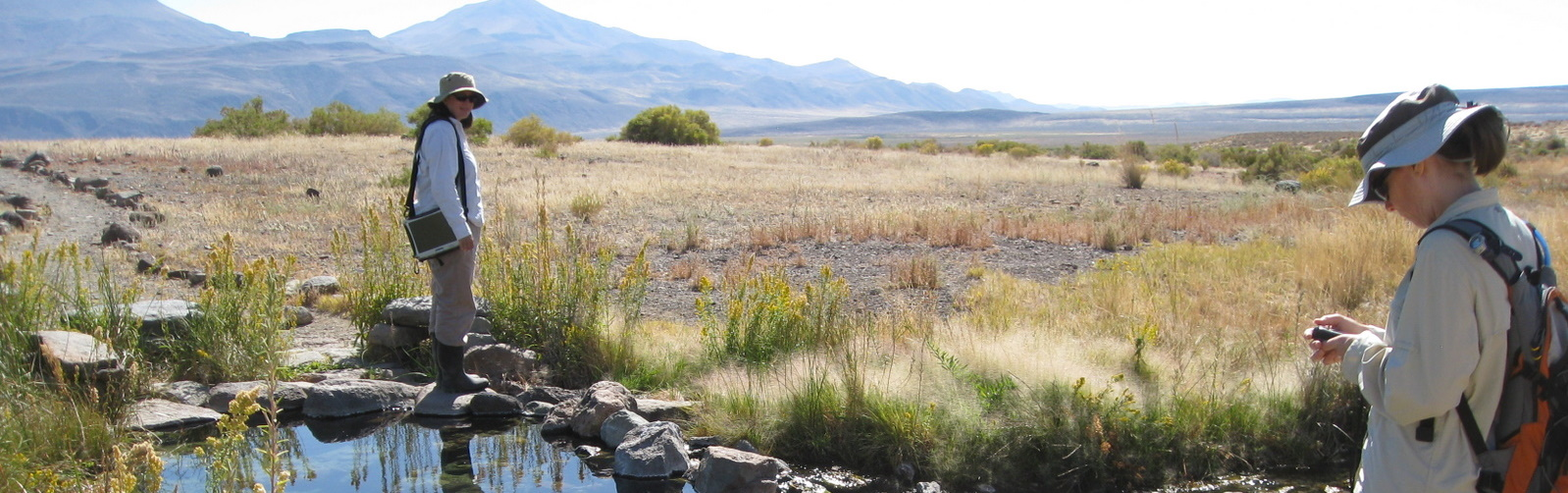 Soldier Meadow Hot Springs, by Kim Williams, NNHP