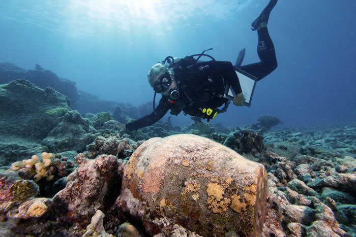 Dr. Kelly Gleason investigates a ginger jar at the Two Brothers shipwreck site