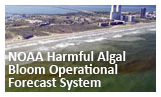Click or touch to go to the NOAA HABs Forecast System