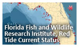 Click or touch to go to the  Florida Fish and Wildlife Research Institute Red Tide Current Status
