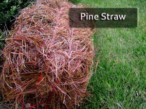 Nashville Pine Straw image why use pine straw image bail of pine straw