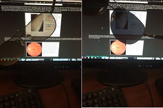 Polarized screen